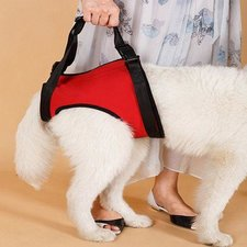 Tilharnas honden achterpoten (maat L)