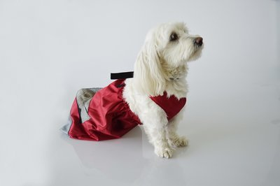 Sleepzak hond / drag bag S